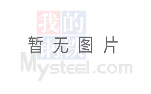 《Mysteel黑色金属例会》